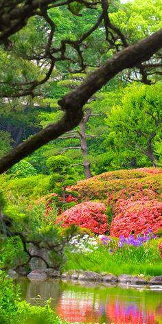 Tennoji Zoo Park - Osaka | Japan, the real japan, real japan, animal, animals, japan, japanese animal, deer, duck, bird, cat, neko, cute, dog, inu, crab, fish, zoo, park, wildlife, tour, explore, travel, adventure, pet, puppy, kitten, rabbit, butterfly http://www.therealjapan.com/subscribe