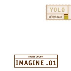 YOLO Colorhouse IMAGINE .01:  A museum white - absent of color.  Great for walls, trim and ceilings. $35.95