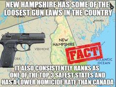340 Best Guns images in 2019   2nd amendment, Gun control, Pro gun