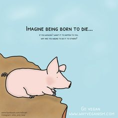 Imagine being born to die... If you wouldn't want it to happen to you, why are you willing to do it to others???????