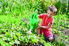 Le samedi 2 avril prochain, de 9h à 17h, le Domaine de Longchamp ouvre en avant-première son parc pour vous proposer une escapade printanière ! Ce sera l'occasion de participer en famille, ou avec vos amis, à la création du parc à travers les plantations de vivaces qui coloreront le Domaine. Au programme de cette journée festive et champêtre animée par l'Atelier Coloco, deux sessions de plantations seront proposées (de 9h à 13h  puis de 14h à 17h). Pour le déjeuner, les participants…