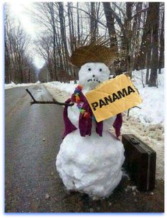 Why don't you join this guy for his vacation in #Panama? Looks like he is a little chilly this winter too! www.panamaroadrunner.com