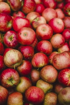 A pile of red apples