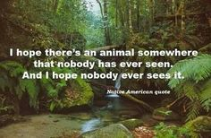 i hope there's an animal somewhere that nobody has ever seen. and i hope nobody ever sees it. Native American Quotes, All Nature, Nature Quotes, Favim, I Hope, Animal Rights, See It, Love, Mother Earth