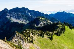 A landscape photograph of the Sourdough Mountains as viewed from the Dege Peak trail near Sunrise, Mount Rainier National Park, Washington. Mount Rainier National Park, Landscape Photographers, Washington State, Trail, Sunrise, National Parks, Hiking, Wall Art, Mountains