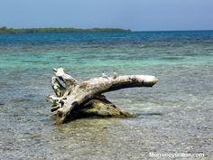 bellos paisajes en Morrocoy pronto directorio web turistico de la zona con morrocoyonline.com