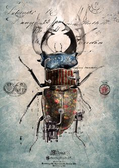 robot beetle | NOTE: I've edited the link in this pin as the Tumblr page…