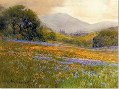Percy Gray - Poppies And Lupine In Bloom California Painting