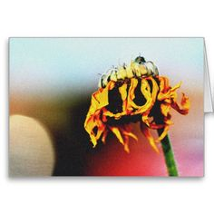 """A blank 7x5 greeting card featuring the image """"Faded Glory"""" by artist and photographer Rodney Keith Richardson. This card can be customized."""
