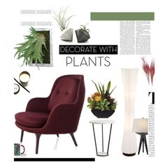 """Grow a Little: Planters'"" by dianefantasy ❤ liked on Polyvore featuring interior, interiors, interior design, home, home decor, interior decorating, plants, polyvorecommunity, polyvoreeditorial and planters"