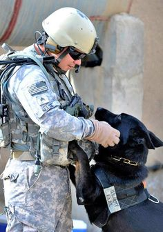 relative to one of the US armd forces - Local Family, Army Sergeant And Working Dog Reunited Military Working Dogs, Military Dogs, Military Service, Military Salute, Military Life, Army Dogs, Police Dogs, Brave, Dog Soldiers