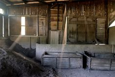 キンメもほろほろに。土佐備長炭を復活させた〈炭玄〉の熱い炭焼きストーリー 高知づくり 「colocal コロカル」ローカルを学ぶ・暮らす・旅する