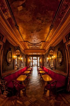 Florian Cafe, Venice, Italy  I will take Kaneman to Venice in 2015