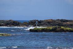 Salt Pond Beach Kauai Excellent Fly Fishing Pictures Go here http://www.flyfilmfest.com/sponsors