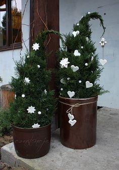 Forum Ogrodnicze Oaza :: Topic: Boże Narodzenie- nasze pomysły i inspiracje na dekoracje świąteczne! (8/12)