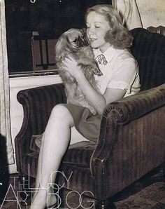 0 Vivian Vance with a pekingese dog William Frawley, I Love Lucy Show, Vivian Vance, Tallulah Bankhead, Lucille Ball Desi Arnaz, Lucy And Ricky, Mimi Love, Old Hollywood Actresses, Best Friends For Life