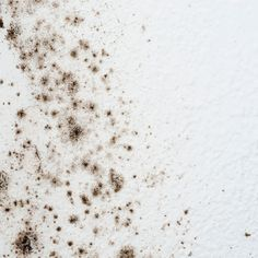 How To Remove Black Mold From A Bathroom Ceiling Youtube In 2020 Mold On Bathroom Ceiling Bathroom Ceiling Remove Black Mold
