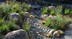 Ditch the Ordinary Ditch: a Here's how to turn your water runoff system into an eye-catching accent for your landscape Jay Sifford. Picture: Mediterranean Landscape by Margie Grace - Grace Design Associates River Rock Landscaping, Landscaping With Rocks, Front Yard Landscaping, Landscaping Ideas, Mulch Landscaping, Santa Barbara, Landscape Design, Garden Design, Desert Landscape