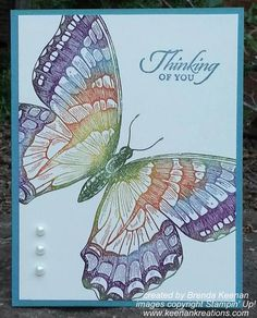 New 2014-2016 Stampin' Up! In Colors