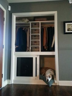 Brilliant!  Built in dog crate. The bottom half of our entry closet wasn't being used. So instead of having those ugly metal crates sitting in our sunroom, my husband and i decided to build this. We were able to add a small shelving system in the middle to hold dog accessories, scarves, gloves, and winter hats.