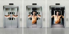 Eliane Indiani Fitness Center: Dumbbells Elevator http://www.arcreactions.com/