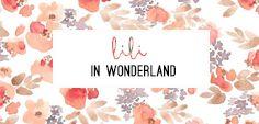 DIY | Lili in wonderland