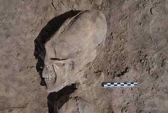 misterioso craneo alienigena encontrado en Onabas sonora, Mexico - Buscar con Google