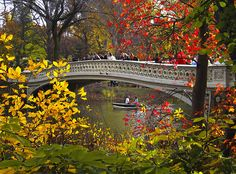 Bow Bridge Fall, Central Park in New York, USA (by LizBallerPhotos).