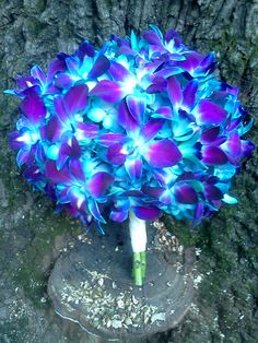 blue orchid bouquet   www.lyndseyloringdesign.com   NH ME MA wedding flowers