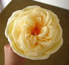 Crepe Paper Flower: the Cabbage Rose | Crafty Creative Gal