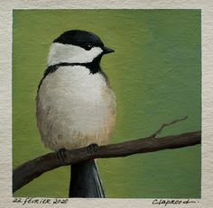 Small bird painting, Black-capped chickadee painting, Original bird art, Small bird artwork, inch acrylic painting within an mount Crow Painting, Original Artwork, Original Paintings, Black Capped Chickadee, Bird Artwork, Small Paintings, Small Birds, Affordable Art, Canvas Size