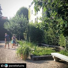 #Repost @jeanettefuchs #insiderei ・・・ #Spaziergang durch den Medizinhistorischen #Garten in #Ingolstadt | #JungeDonau #Bavaria #Germany #walk #summer #nature #mustsee  #herbs & #drugs & #poison come in #beautiful #green settings #fromwhereistand #travelwithme