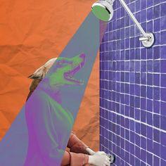"47 Likes, 3 Comments - Febrian Prambudi (@feb.prambudi) on Instagram: ""enlightment . . . . #collage #collageart #fox #purple #orange #light #shower #redemption #bathroom…"""