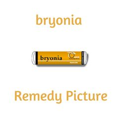 Bryonia is less rapid in its action than Aconite, but goes deeper in its effects, often taking up where Aconite leaves off. Dominant characteristics of Bryonia are dryness of mucous and serous membranes, pain aggravated by any movement and physical weakness. Used in home prescribing for dry coughs, dry mucous membranes, colic and joint pains. The person wants to be left alone but is very thirsty for warm drinks.