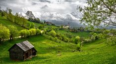 An image of the rural (and mountain) landscape of Romania during summer. Photo taken @ Magura, Brasov, Romania. Silence of the countryside Transylvania Dracula Castle, Transylvania Romania, Tree Landscape Wallpaper, Nature Wallpaper, Hd Wallpaper, Background For Photography, Nature Photography, Germany Landscape, Cool Landscapes