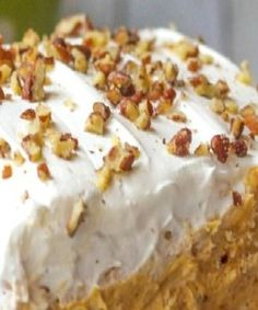 Pumpkin Delight Dessert ~ With a pecan layer, cream cheese layer, pumpkin and pudding layer and a Cool Whip layer on top Mini Desserts, Layered Desserts, Just Desserts, Delicious Desserts, Yummy Food, Potluck Desserts, Dessert Food, Health Desserts, Desserts For Thanksgiving