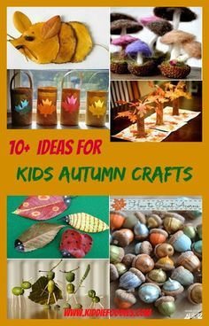 10  ideas for DIY autumn crafts for kids