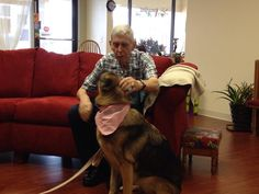 Coco doing Therapy Dog Work in Margate, FL. Every week we try to get to an Adult Day Care.   #TherapyDogsRock