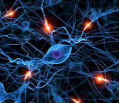 #neurofeedback therapy