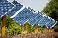 Giant solar farm eyed for Howard County's Nixon Farm Howard County, News Highlights, Solar Panels, Explore, Eyes, Outdoor Decor, Sun Panels, Solar Power Panels, Cat Eyes