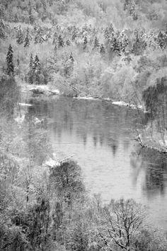 Nature of Latvia. Winter. River Gauja. Sigulda, Latvia.
