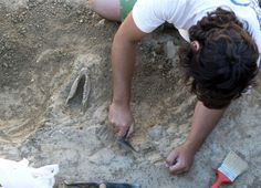 Brazilian archaeologists find human presence dating back 4,000 years in Rio