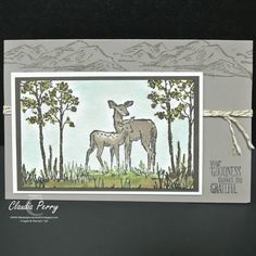 Stampin' Up!, In The Meadow