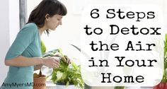 6 Steps To Detox The Air In Your Home