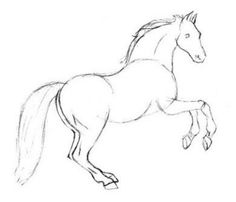 easy+sketches+of+animals | Step – 1 Drawing a Horse in Pencil: