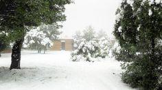 Into the woods #nieve #snow #invierno #winter #cold #hotel #hotelviews #travel #viaje #viatge #vouyage #reise #travelling #instatravel #architecture #arquitectura #diseño #design #Spain #España #Aragón #Teruel #Matarranya #nature #rural #boutiqueHotel