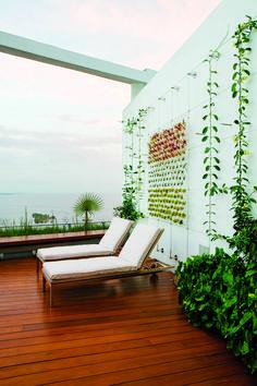 Raymond Jungles   » Grovenor Rooftop Garden