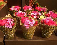 Mini compo Actuel Flors Torcy http://www.actuelflors.com/