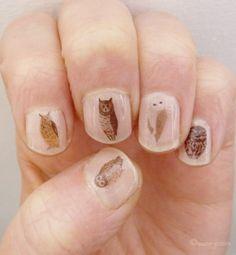 讓動物住在自己的指甲上 //ネイル トランスファー mixed owl_英國設計師kate broughton 設計的nail transfers
