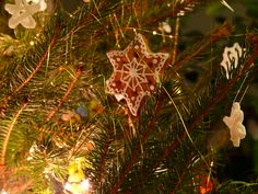 Edible christmas ornaments.  Gingerbread cookies